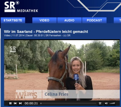 Pferdeflüstern leicht gemacht - Wir im Saarland