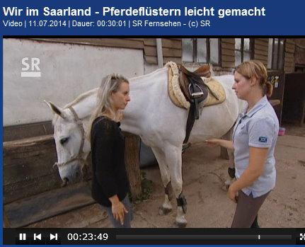 Der Pferdeflüsterer im Saarland