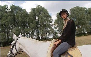 Pferde kennen lernen